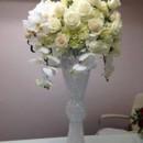 130x130 sq 1428613032021 elegant orchids