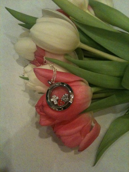photo 37 of Origami Owl Custom Jewelry- Danielle Martin