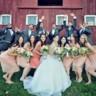 96x96 sq 1480973601809 elizabeth and anthonys wedding20439119565o1
