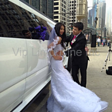 12 Passenger Van Rental Chicago >> VIP Limousine, Inc. - Transportation - Chicago, IL ...