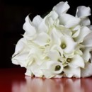 130x130 sq 1370818841107 classic calla lily bridal bouquet 300
