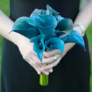 130x130_sq_1367524117389-blue-bouquet