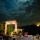 130x130_sq_1364491223135-brandhorstwedding324
