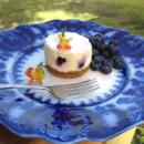 130x130 sq 1365443301308 blueberry