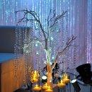 130x130_sq_1349885982927-magnoliaroom63