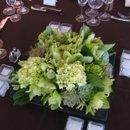 130x130 sq 1239732615562 greensucculents