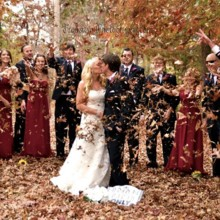 220x220 sq 1453170704102 falling leaves wedding