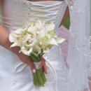 130x130 sq 1212881351639 wedding pics 164