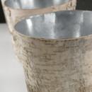 130x130 sq 1399569872750 birch pot