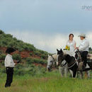 130x130 sq 1528801782 2271adcbb08f59cf 1409421127873 horseback wedding 1