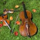 130x130_sq_1213299748068-instruments
