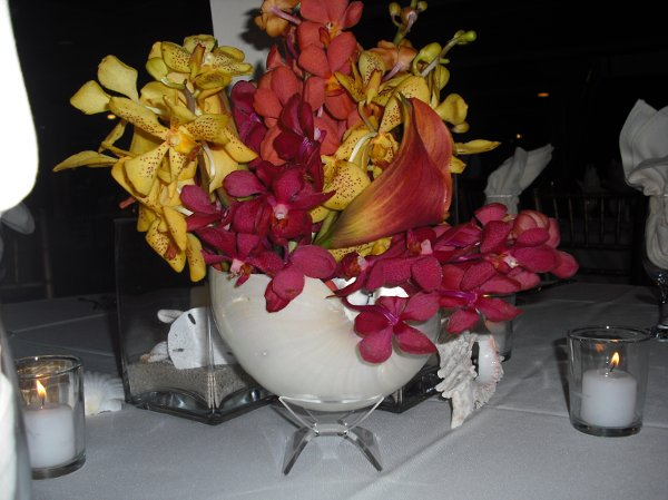 photo 32 of SFL Weddings, Inc.