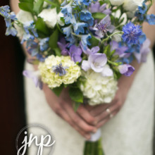 220x220 sq 1471109249261 julie napear photography bouquet blue delphinium h