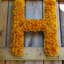 130x130 sq 1316373905945 enchantedfloristtennesseefarmweddingmonogram