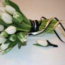 130x130 sq 1360854700965 tulipswhiteparrots