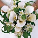 130x130_sq_1327418555947-bridalboquetscallaliliesstarofbethlehemrosest