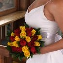 130x130_sq_1327418783727-bridalbouquetroyalyellowredroses