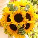 130x130 sq 1327419066815 sunflowerbride