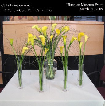 photo 4 of Pacific Callas