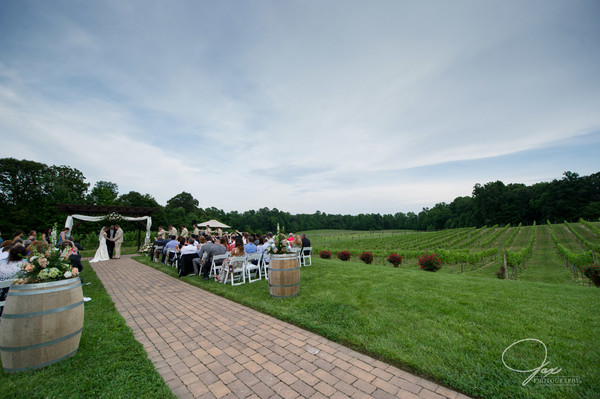 1494433734841 0881carneswed 003 Prince Frederick wedding venue