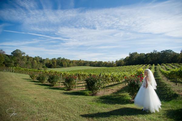 1494515232033 0212lidhgaineywed Prince Frederick wedding venue