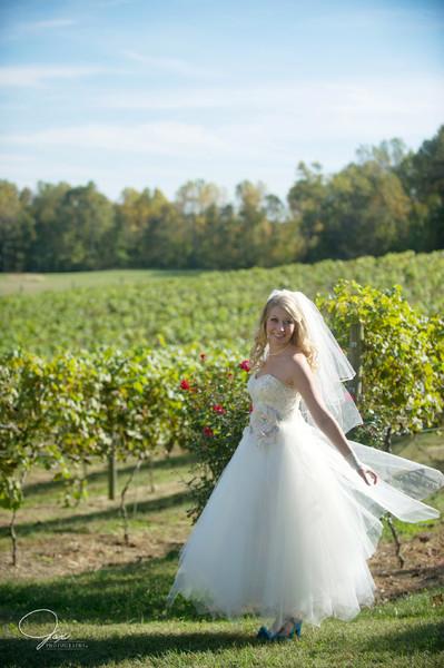1494515266444 0216lidhgaineywed Prince Frederick wedding venue