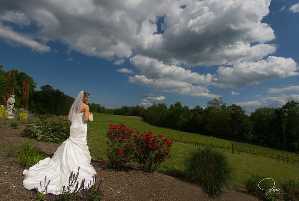1494515316335 0225524nicolemileswed Prince Frederick wedding venue