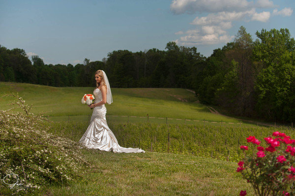 1494515354482 0234524nicolemileswed Prince Frederick wedding venue