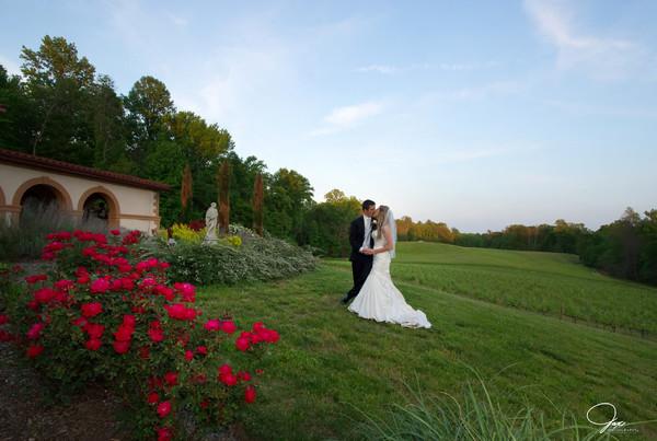 1494621015350 1095524nicolemileswed Prince Frederick wedding venue