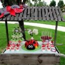 130x130 sq 1367359925104 ladybug table