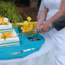 220x220 sq 1421255802292 blue yellow outdoor wedding cake