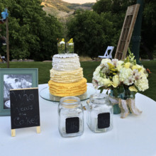 220x220 sq 1421255974014 yellow white outdoor mason jar cake
