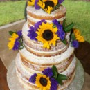 130x130 sq 1414420337120 naked wedding cake1