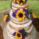 130x130 sq 1414420337120 naked wedding cake1