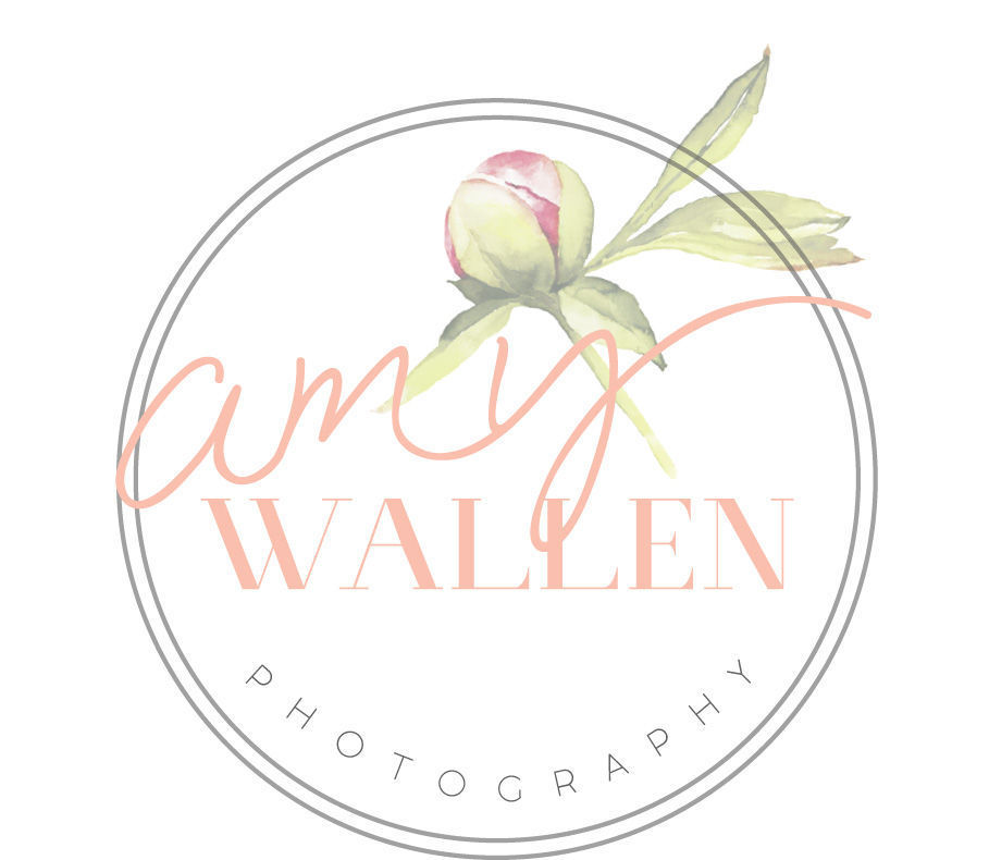 wedding cakes prestonsburg ky wallen photography map wallen photography 25309