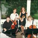 Four Seasons String Quartet image