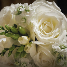 Peony Design Studio, LLC Wedding and Event Flowers