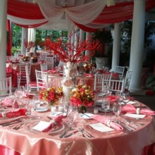 chair decoration for wedding chiavari chairs of michigan event rentals mi 2534