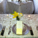 130x130 sq 1369920976591 cream and yellow special event