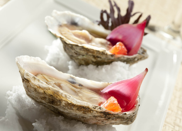 600x600 1425402543678 oysters0017