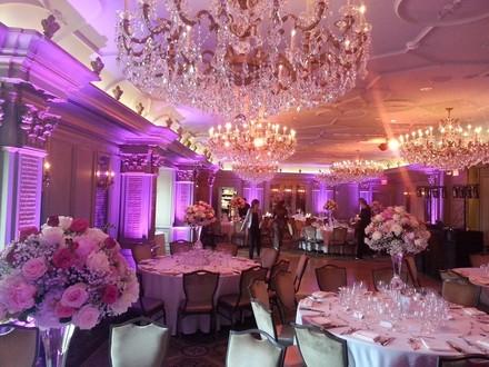 Jackson wedding decor lighting reviews for 6 decor lighting jackson ms champagne event services junglespirit Images