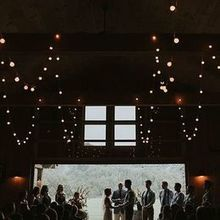 220x220 sq 1530896356 b2399b7ba41ed7c4 1530896355 2d348ba96db55f3d 1530896333250 5 raleigh wedding ph