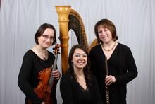 220x220 1370148232224 flute viola harp