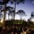 48x48_sq_1378222008160-arte-de-vie-photography-pine-grove