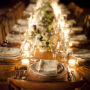 Event Planner: Jolene Sullivan  <br /> Venue: Chateau St. Jean  <br /> Floral Design: The Monkey Flower Group  <br /> Wedding Dress: Oleg Cassini  <br /> Cake: The Whole Cake  <br /> Linens: La Tavola Fine Linen  <br /> Rentals: Wine Country Party &amp; Events  <br /> Makeup: It's a Date at the Powder Room  <br />