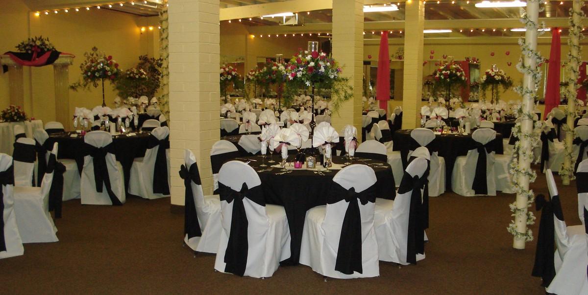 Celebrations party spot venue tucson az weddingwire junglespirit Image collections