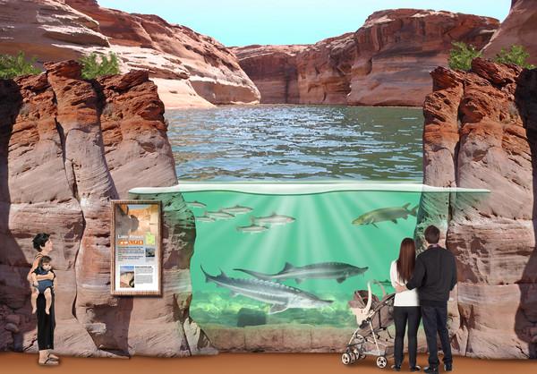 Loveland Living Planet Aquarium Draper Ut Wedding Venue