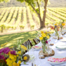 Venue: Hammersky Vineyards  Caterer: Trumpet Vine Catering  Dress Designer: Nicole Miller  Bridal Shoes: Kelly and Katie  Men's Attire: Al Weiss Inc.  Hair Stylist: Hive Beauty Collective  Equipment Rentals: All About Events  Napkins: Picking Daises