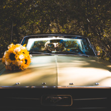 220x220 sq 1510933437816 mustang wedding