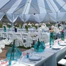 220x220 sq 1379714433553 malibu wedding